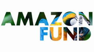logo_amazon_fund_grande